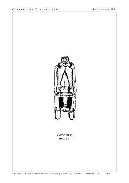 Amandine Delaunay - Ampoule Bulbe