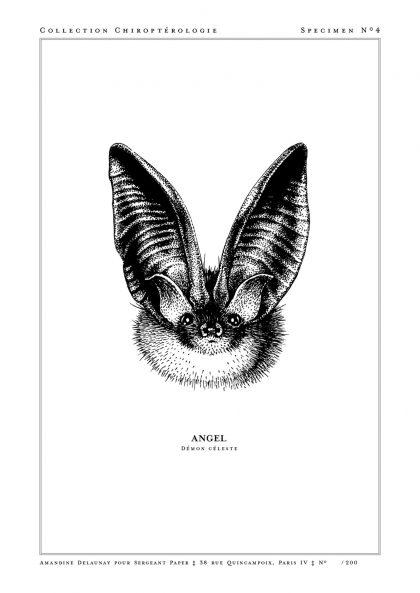 Amandine Delaunay - Angel