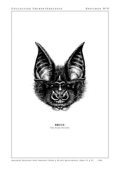 Amandine Delaunay - Bruce