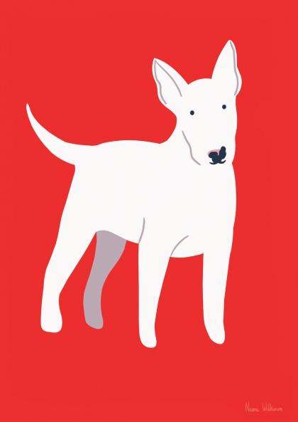 Marcel et Joachim - Bull Terrier - Naomi Wilkinson