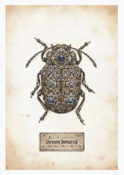 Steeven Salvat Chrysora Saphistica