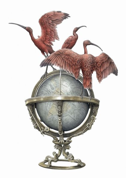 Steeven Salvat - Globe