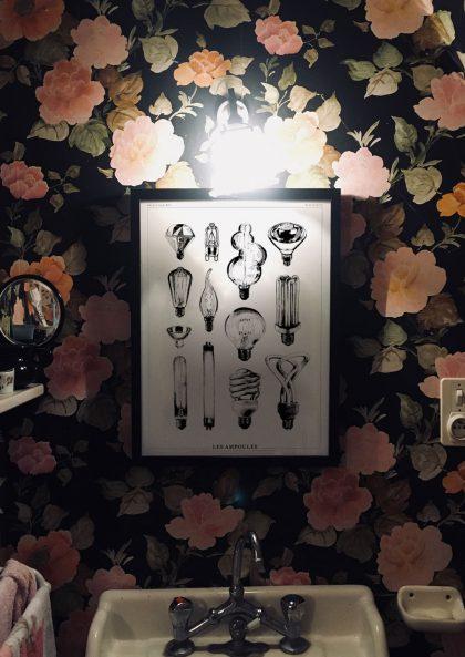 Amandine Delaunay Les Ampoules