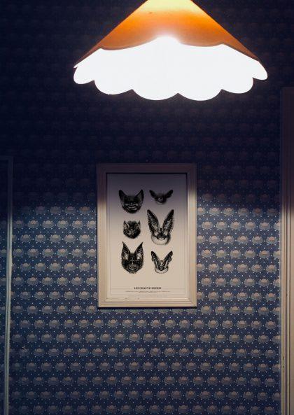 Amandine Delaunay Les Chauve-Souris