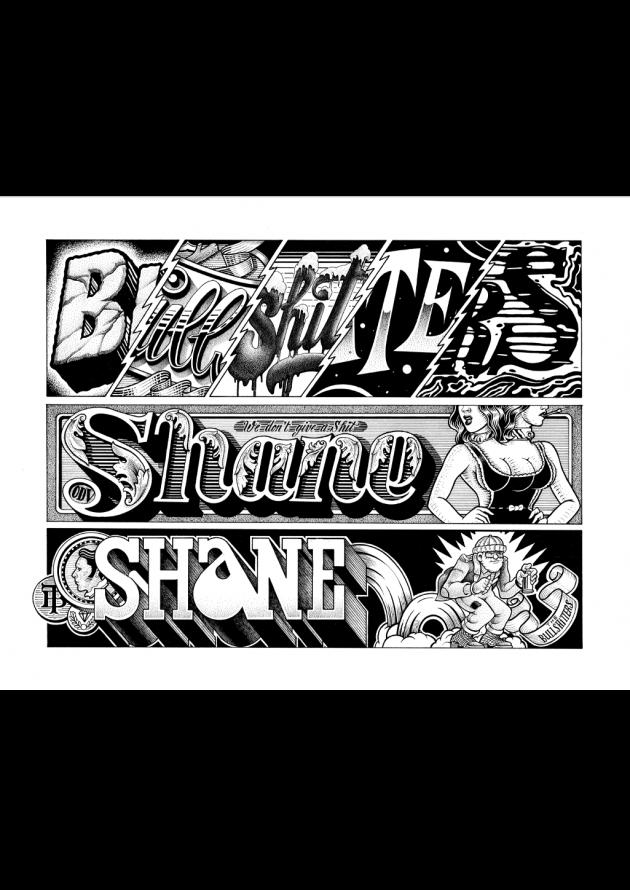 Shane - Type 2