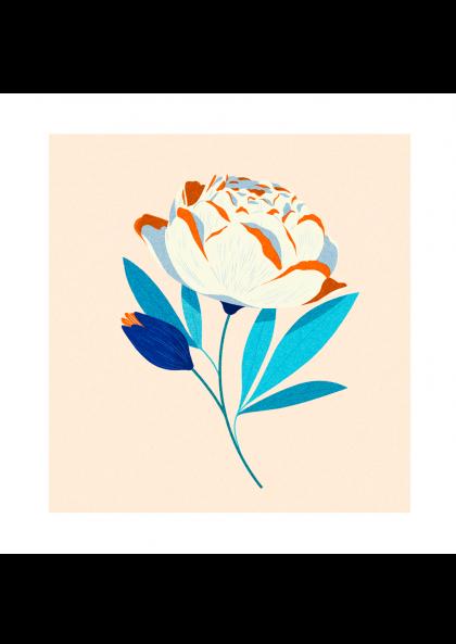 Julie Guillem Fleur rose