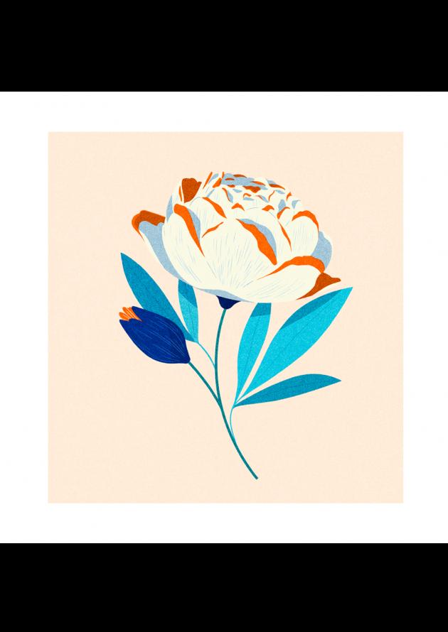 Julie Guillem - Fleur rose