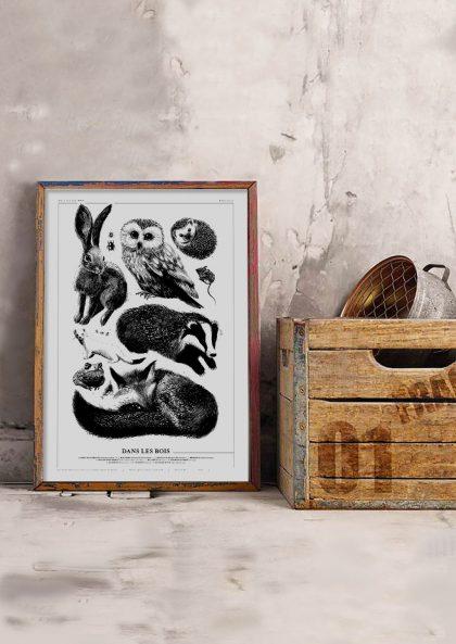 Amandine Delaunay - Dans les bois